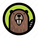animal, beaver, face icon