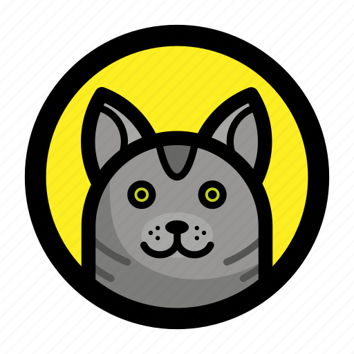 Cat, animal, face, kitty, pet icon - Download on Iconfinder