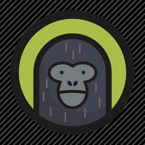 animal, face, gorilla, monkey, zoo icon