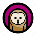 animal, bird, face, night, owl icon