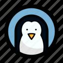 penguin, animal, bird, face, pinguin, snow icon