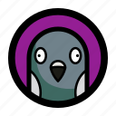 bird, face, pigeon icon