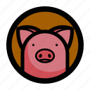 animal, face, farm, pig, piggy icon