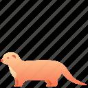 animal, creature, ferret, mammal, weasel, wild icon