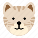 animal, fast, jungle, leopard, zoo icon