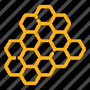 bee, food, healthy, honey, honeycomb, sweet, wax icon