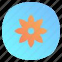 app, gallery, mobile, photos icon