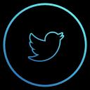 app, twitter, bird, media, network, share, social
