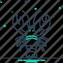 crayfish, langouste, lobster, pleopod, prawn, reptantia, shrimp