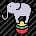 ball, circus, elephant, fest, show