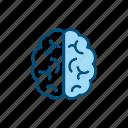 artificial, intelligence, ai, brain