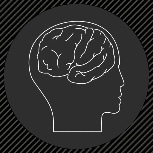 artificial, brain, intelligence icon