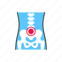 arthritis, body, human, inflammation, joints, lower back icon