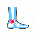 ankle, arthritis, artritis, body, human, inflammation, joints icon
