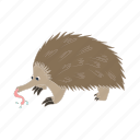 animal, anteater, cartoon, nature, tongue, wild, zoo icon