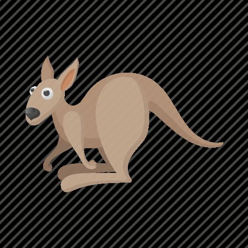 animal, australia, cartoon, kangaroo, mammal, vectior, wildlife icon