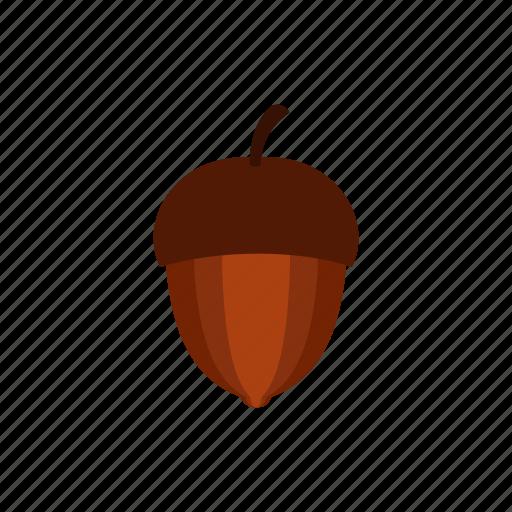 acorn, autumn, nature, nut, oak, plant, seed icon