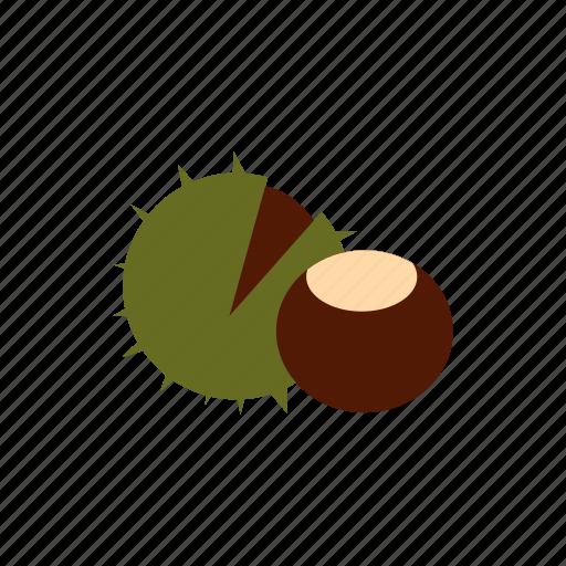 autumn, brown, chestnut, food, nature, nut, plant icon
