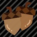 acorn, autumn, chestnut, fall, oak icon