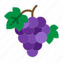 berry, fruit, grape, grapes, wine icon