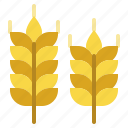 barley, branch, leaves, nature, wheat icon