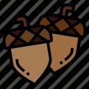 acorn, autumn, chestnut, fall, oak