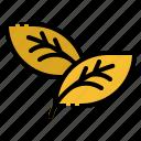 autumn, eco, environment, leaf, nature icon
