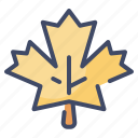 autumn, canada, leaf, maple, nature, plant icon