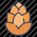 autumn, cone, nature, nut, pine icon