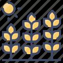 agriculture, farm, field, sun, wheat icon