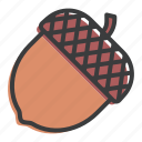 acorn, autumn, chestnut, nature, nut, oak, seed icon