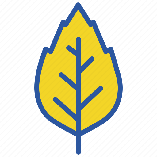 Autumn, birch, elm, fall, leaf, nature, oak icon - Download on Iconfinder