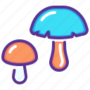 fungus, grow, healthy, mushroom, plant, shroom, vegetable icon