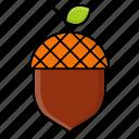acorn, autumn, nature, nut, oak, season