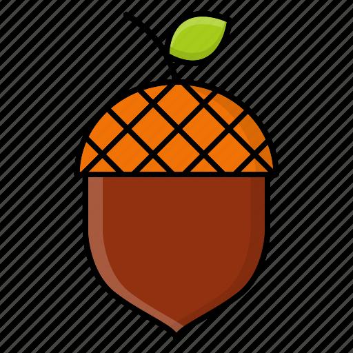 acorn, autumn, nature, nut, oak, season icon