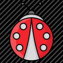 animal, bug, insect, nature, season icon