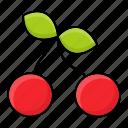 ashberry, plant, autumn, rowan, wild, berries icon