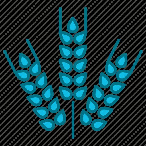 agriculture, crop, food, gluten, grain, harvest, wheat icon