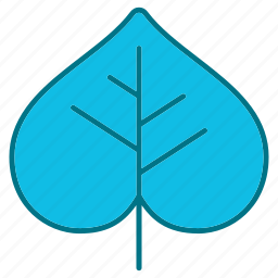 autumn, beech, leaf, nature, season icon