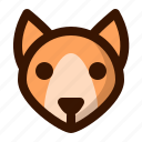 animal, autumn, dog, fall, fox, pet, wild icon