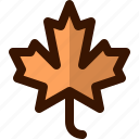 autumn, fall, leaf, leaves, maple, nature, tree icon
