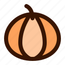 autumn, fall, food, halloween, holiday, pumpkin, vegetable icon