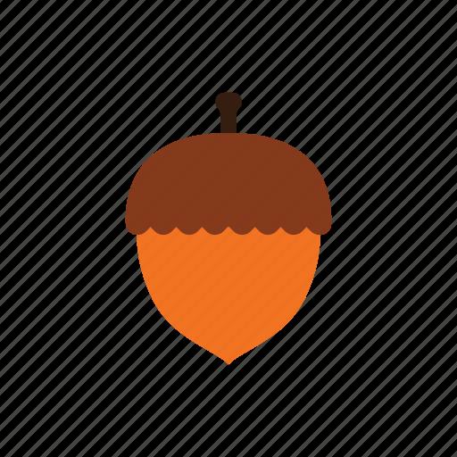 acorn, autumn, brown, nature, oak, season, seed icon