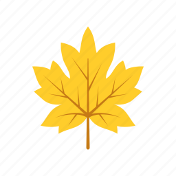 autumn, leaf, leave, maple, nature, season, yellow icon