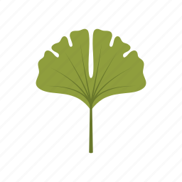 autumn, ginko, green, leaf, leave, nature, season icon