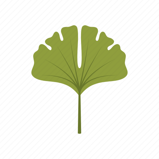 autumn, ginko, green, leaf, leave, nature, season icon