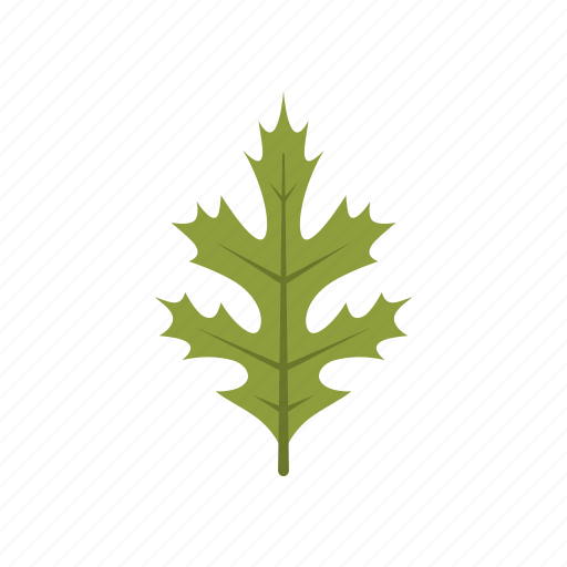 autumn, green, leaf, leave, nature, oak, season icon