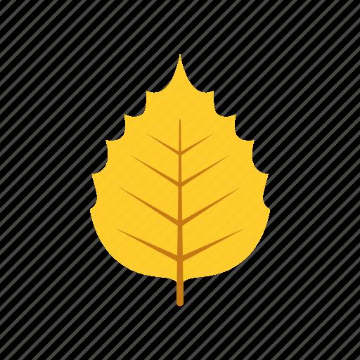 autumn, birch, leaf, leave, nature, season, yellow icon