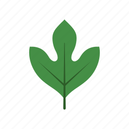 autumn, green, leaf, leave, nature, sassafras, season icon
