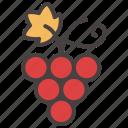 autumn, berry, blackcurrant, fall, fruit, grape, nature icon
